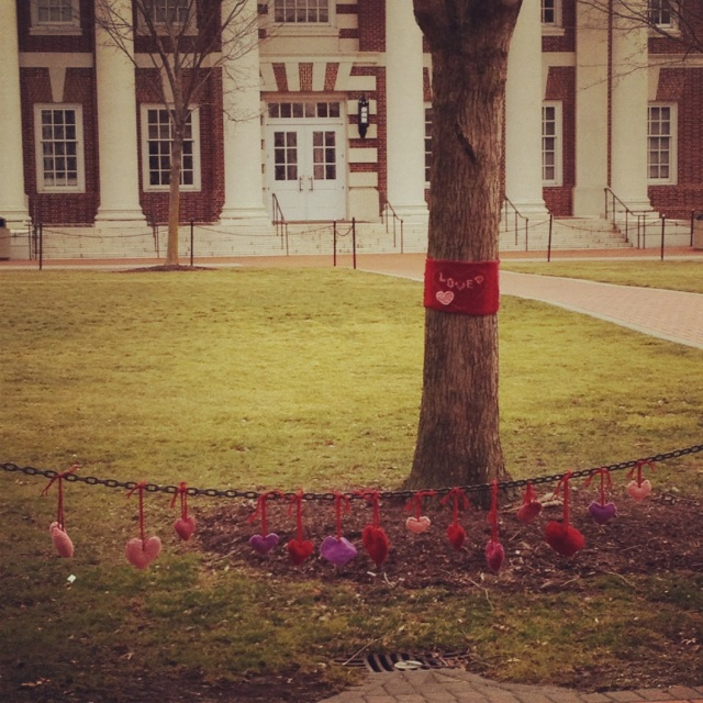 Valentine's Day Yarn Bomb on UD's Green