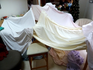 2nd Annual New Years Fort